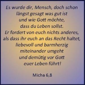 micha6,8
