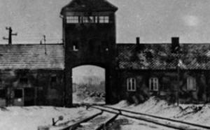 Bundesarchiv_Bild_175-04413,_KZ_Auschwitz,_Einfahrt